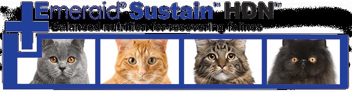 Emeraid sustain for felines